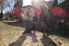 Sozialspaziergang Welpen & Junghunde